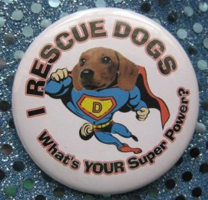 The Wonder of Rescue